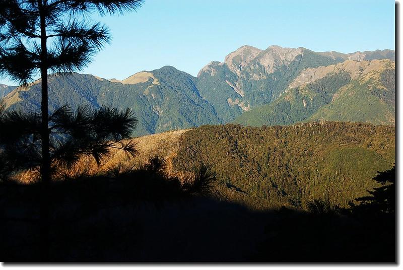 710林道遙望雪山 2