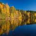 Norwegian Autumn Reflections by RobertCross1 (off and on)
