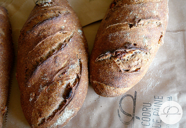 paine cu nuci 09