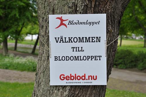 Blodomloppet 2013 Eddie Granlund
