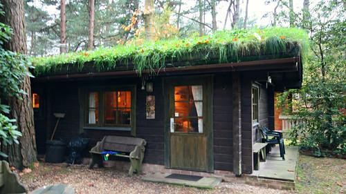 Piilopirtti Cottage, Karelia Holidays, Ringwood, Hampshire