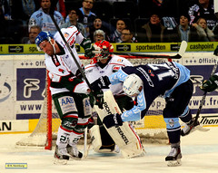 Hamburg Freezers - Augsburg Panther (4)