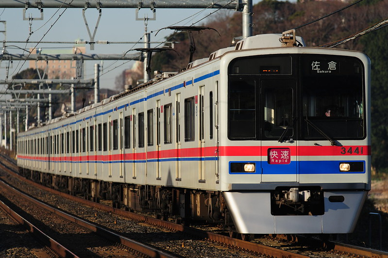 7A25 3448 Rapid Sakura
