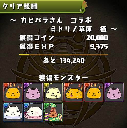 vs_capybaraCorabo_result_131216