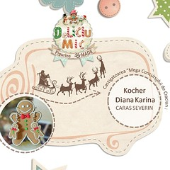 Inca un premiu pleaca spre Caras Severin:) Felicitari Karina! http://deliciumic.blogspot.ro/p/blog-page_16.html