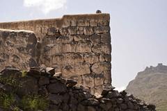 Sunlit, Haraz Mtns, Yemen