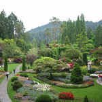 Garden on Vancouver Island