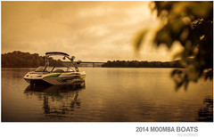 http://moomba.com/downloads/moombacat2014.pdf