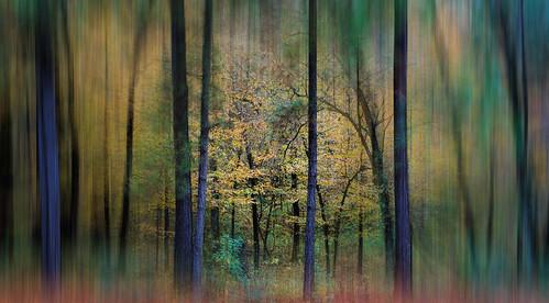 Artwork In Images Taken