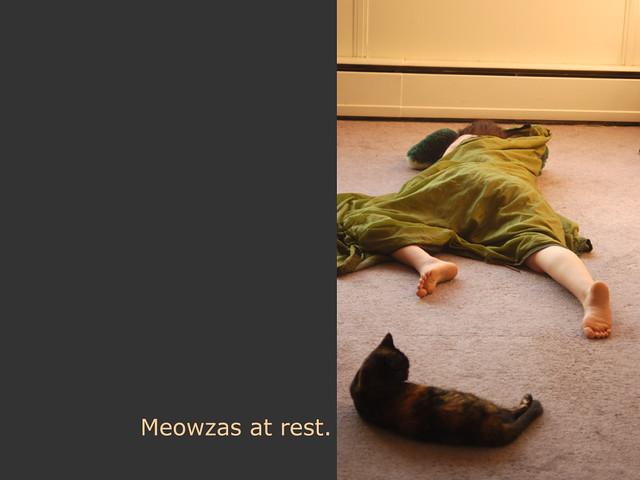 meowzas