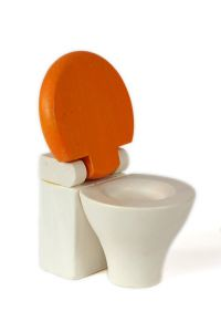 Home improvement toilet toy