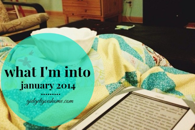 what I'm into :: january 2014