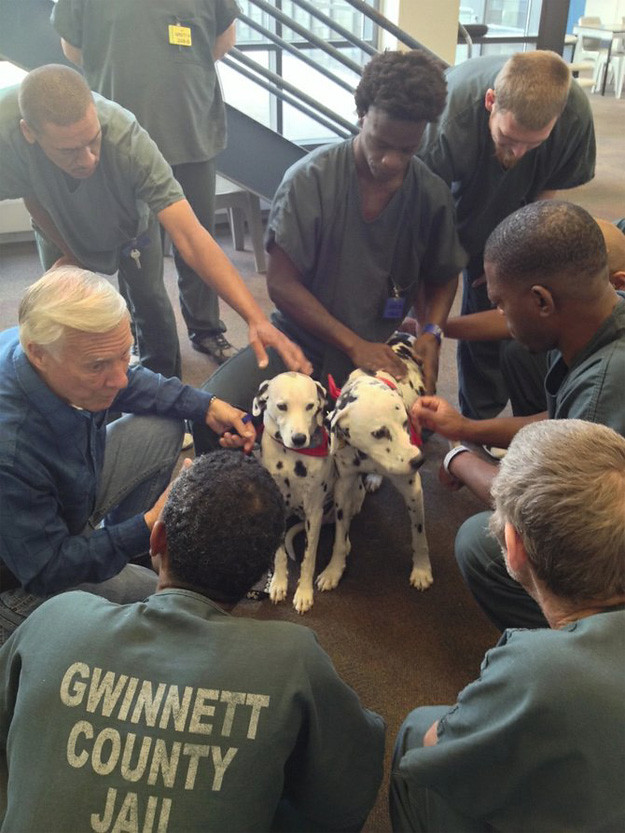 Gwinnett County animal therapy program getting local news attention