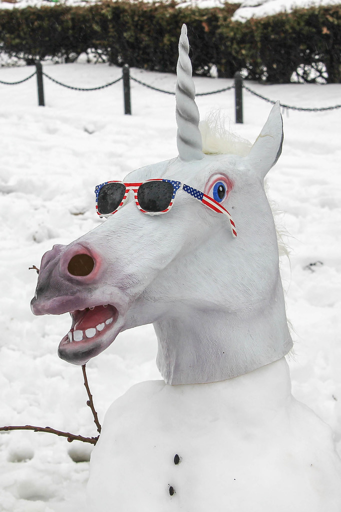 unicorn of snow