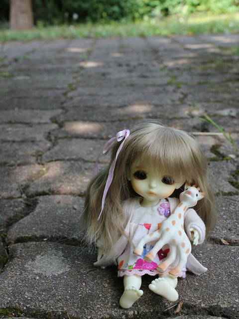 [Haru B&B] nouvelle wig ♡ p11 - Page 6 14109314243_aaf0f813eb_z