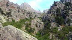 Remontée du ruisseau de Vetta di Muru
