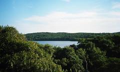 Pond near Lambert's Cove
