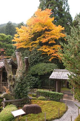【写真】2012 紅葉 : 寂光院/2020-08-29/IMGP6306