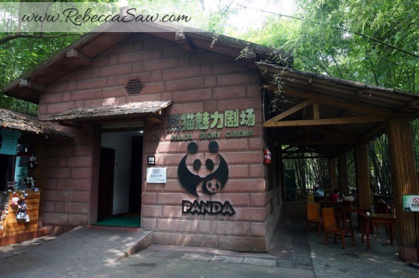 Chengdu - Panda Breeding Farm-063