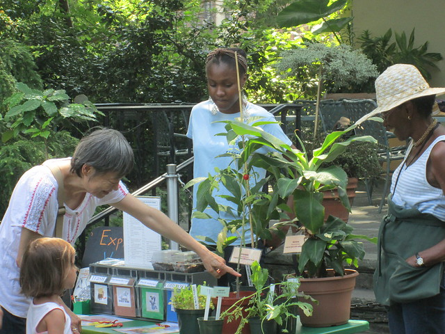 Volunteers and staff teach visitors about a different garden topic each week at the Discovery table in the Fragrance Garden. Photo by Ashley Gamell.