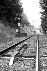 Signal D