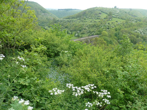 The Monsal Trail ~ 15th May 2011.