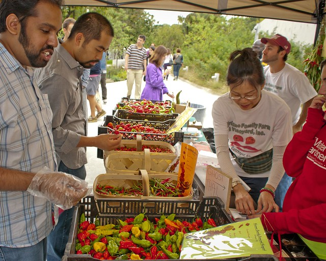Visitors at the Chile Pepper Farm Stand. Photo by Michael Ratliff.