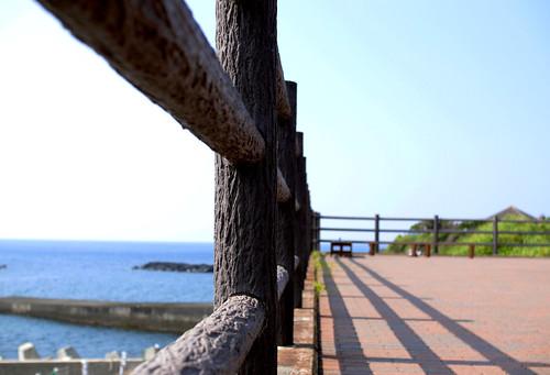 伊豆大島にて