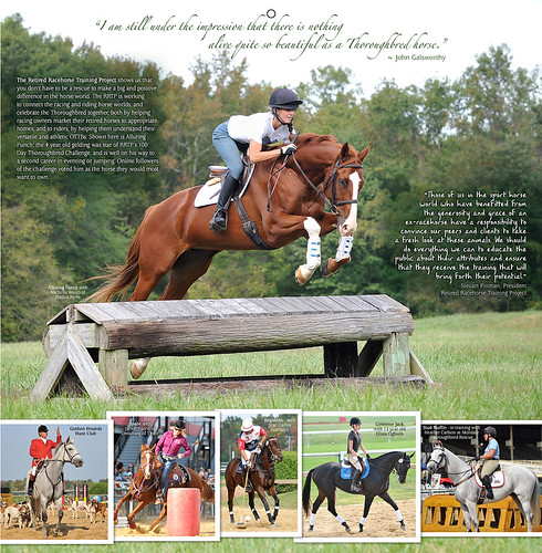 2014 Horses and Hope calendar preview: JULY