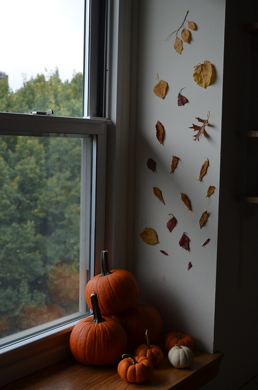 autumnalwanderlust2