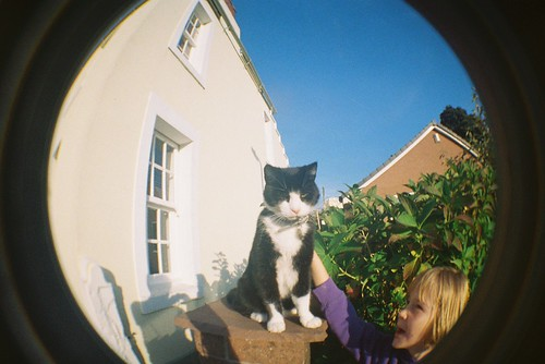 Korky in wideangle