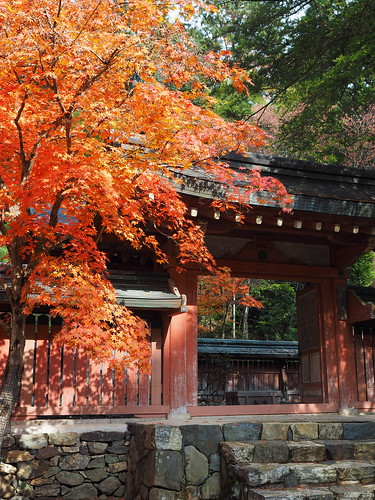 神護寺 和気清麻呂霊廟 紅葉