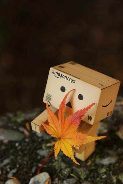 秋の衣装2