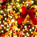 東京ディズニーランド (クリスマス)