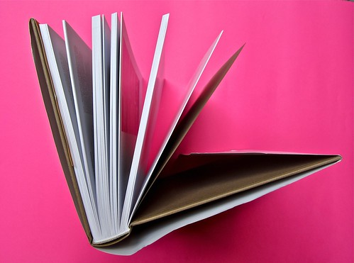 Michael Nedo (a cura di), Una biografia per immagini. Carocci 2013. Progetto grafico di Shoko Mugikura e Michael Nedo. Falcinelli & co. per l'ed. it. Taglio superiore (part.) 1