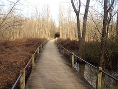 Heritage Park Trail Boardwalk