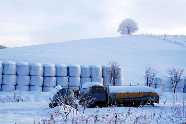 廃トラックのある風景