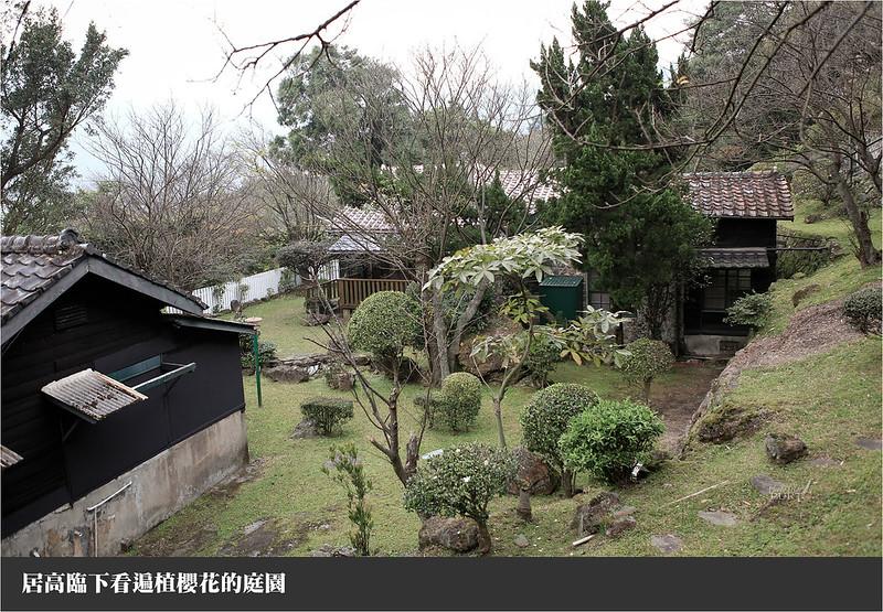居高臨下看遍植櫻花的庭園
