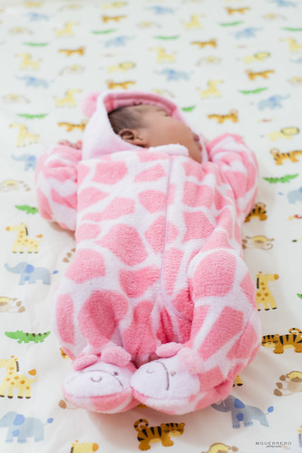 snugabye pink giraffe sleeper, babies r us safari crib sheet