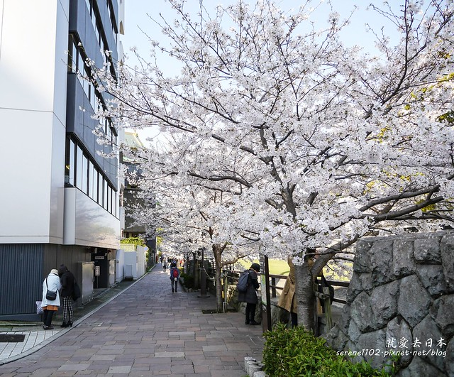 20140327山陽D2熊本-1120756
