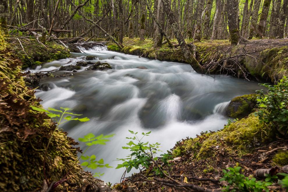 En las montañas con glaciares de la Patagonia, el deshielo crea arroyos y ríos cristalinos, donde el excursionista puede beber este liquido puro y cristalino, con miles de años de antigüedad. (Tetsu Espósito).