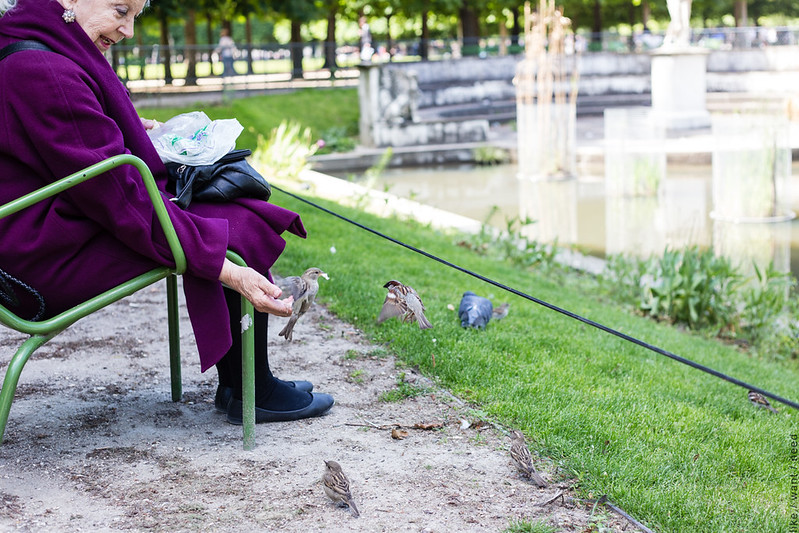 Bird Lady, Jardin des Tuileries