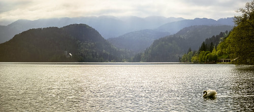 travel sunset lake mountains water landscape spring swan europe day sony slovenia bled radovljica sonya7 sel2870