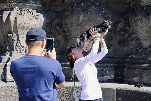 An ordinary day in Prague: Getting your spouse to snap a pic of you kissing your dog, with his phone, on Prague's most famous bridge.