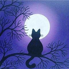 Feliz madruga ! #blogauroradecinemadeseja  #moonlight #moon #fullmoon #luna #lunar #lua #luar #nightin #instanight #20likes #clouds