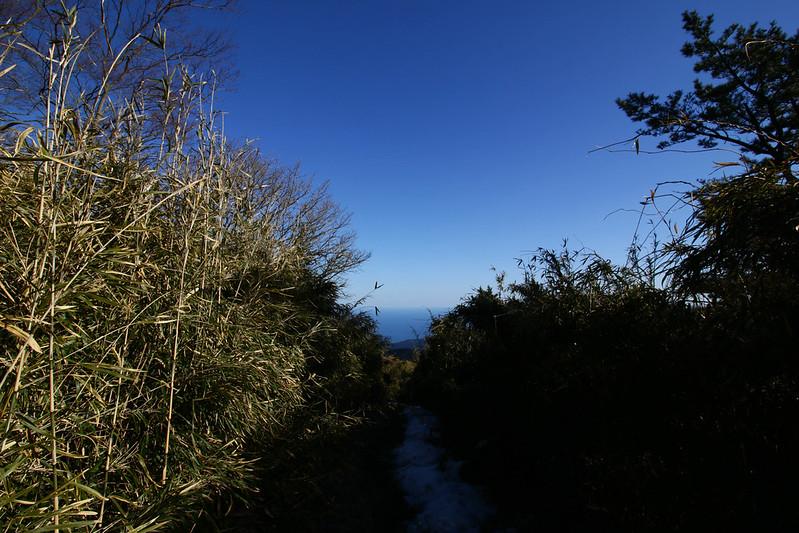 20150214-明神ヶ岳-0299.jpg