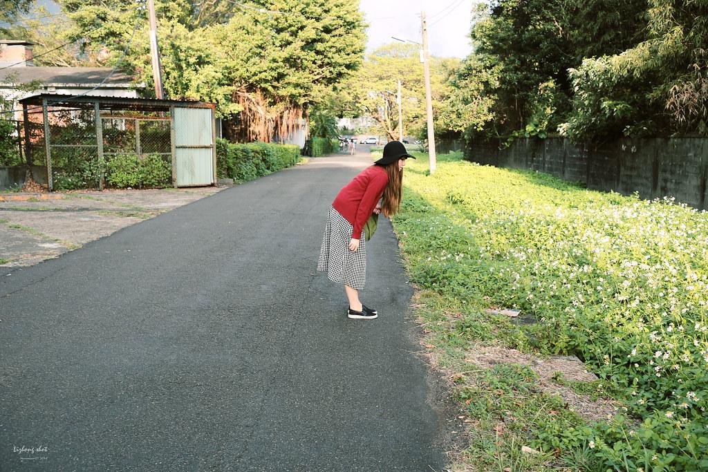 陽金公路一日悠遊