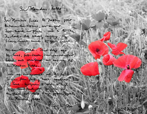 20161111-poppies-w-signed