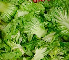 Fresh vegetable healthy raw food
