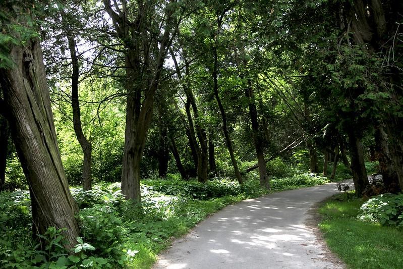park path bville 2